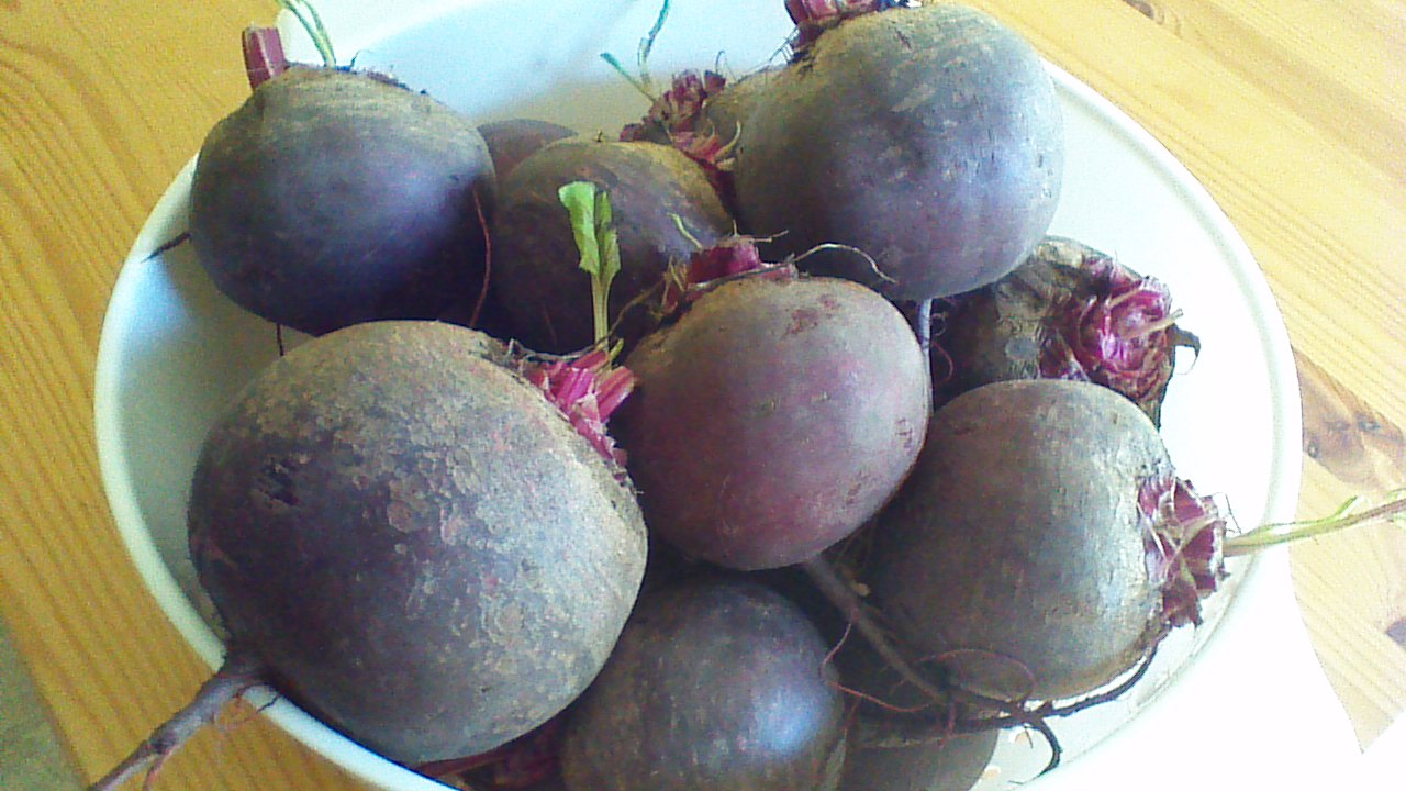 Easy Pickled Beets – Crowded Earth Kitchen
